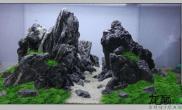 水草造景三个青龙石的造景骨架