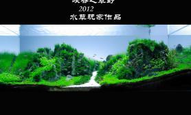 2012年 很好得1图片3米超白缸造景