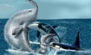 地球无法证实的生物长毛鱼及长毛鱼目击过程
