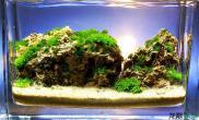 尼玛水草缸这绝对是大手笔水草缸大制作啊水草缸有木有?