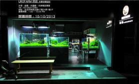 台湾水族店水草缸造景UroFarm悠访