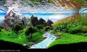 水族造景中背景壁纸的运用