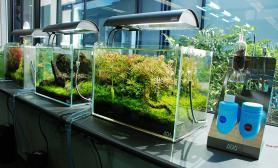 日本ADA展厅设计作品-2010年10月