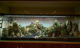 水草造景为客人开的1米八烟火山景缸