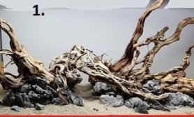 沉木、杜鹃根骨架欣赏