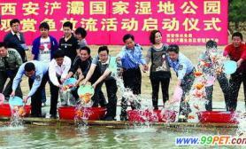 浐灞湿地投放十万余尾观赏鱼(图)